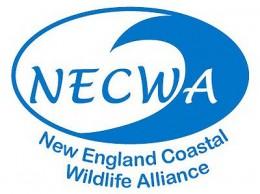 New England Coastal Wildlife Alliance